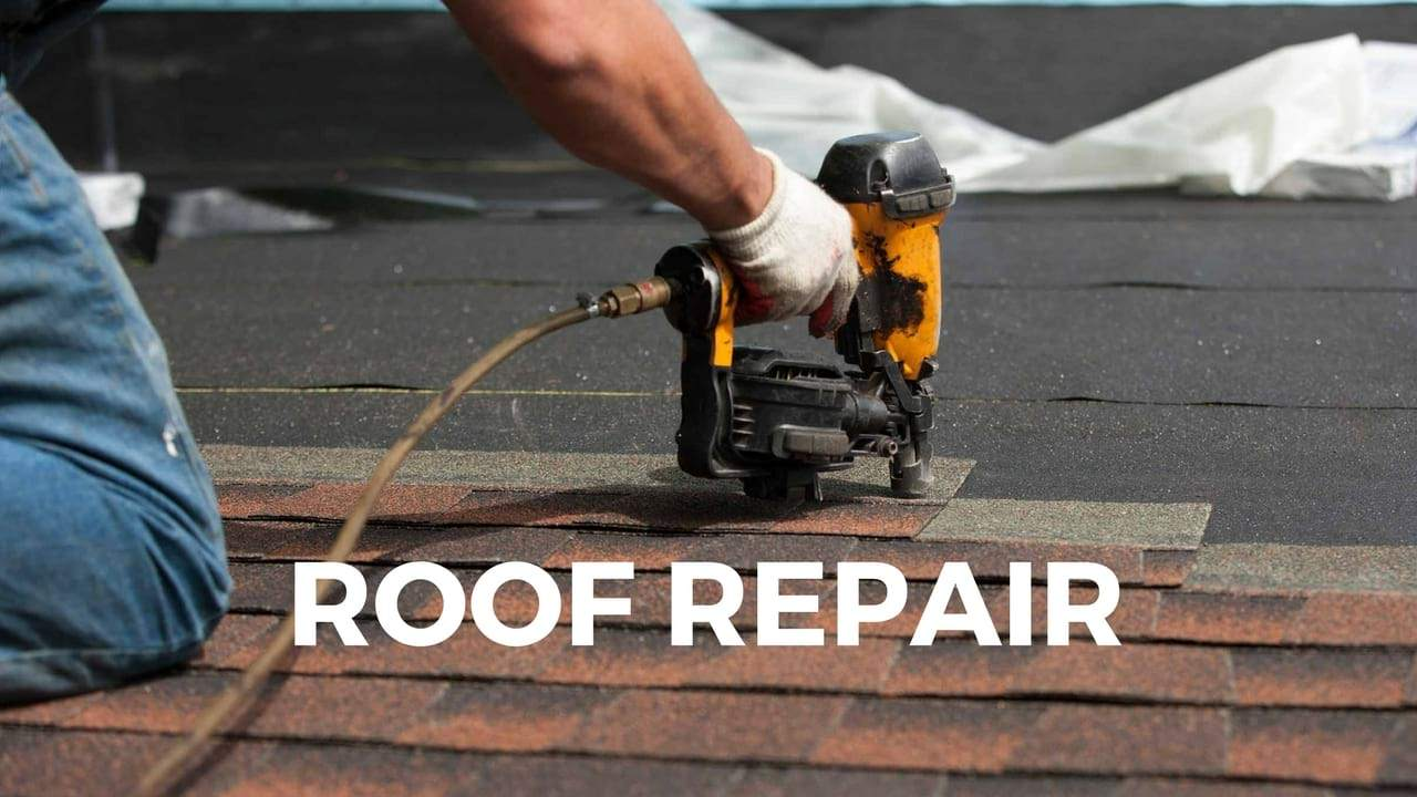 Should I Hire a Contractor or a Handyman for my Damaged Roof | MBH Roofing  & Waterproofing